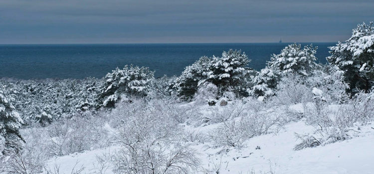 A fairytale winter in Neringa